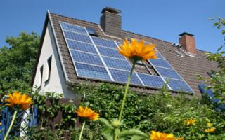 Советы для начинающих: как правильно выбирать солнечные панели?
