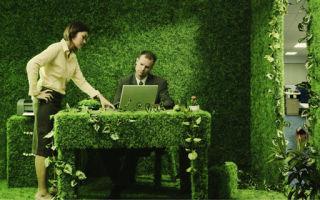Что такое Зеленый офис