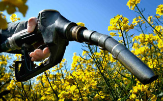Что такое биотопливо, его виды и преимущества?