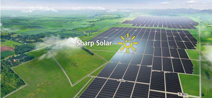 В Sharp начали изготавливать прозрачные солнечные батареи