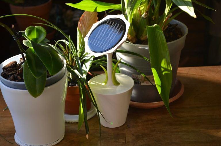 Подсолнух - зарядное устройство на солнечных батареях